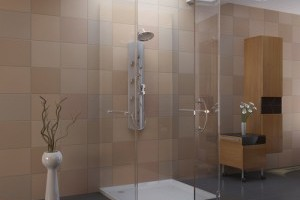 Simple Bathroom Shower Ideas