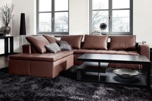 Living Room Ideas With Brown Sofas 3
