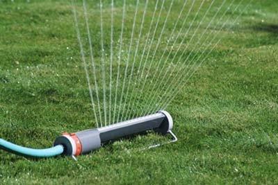 Important Basic Lawn Maintenance Rules