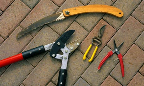 Garden tool maintenance garden tool maintenance tips for Garden maintenance tools