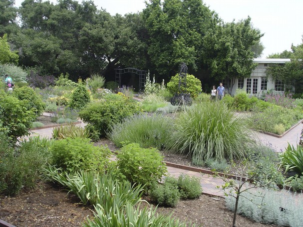 Natural Pesticides For Gardens 1760