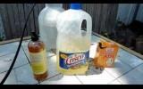Organic Fungicide Recipe Ingredients