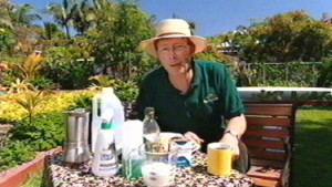 Organic Fungicide Recipe Efficiency