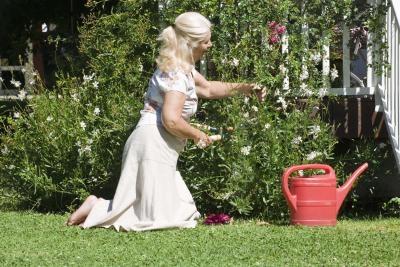 Organic Pesticides for Gardens Types