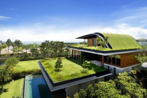 Find The Idea of Green Architecture