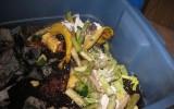 Functional Trash Can Compost Bin