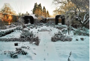 Find Winter Garden Benefits and Tips