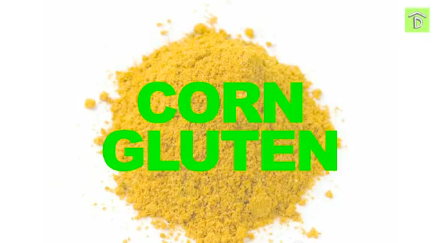 Corn Gluten Weed Killer Functions