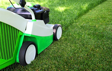 The Information of Basic Lawn Maintenance Rules
