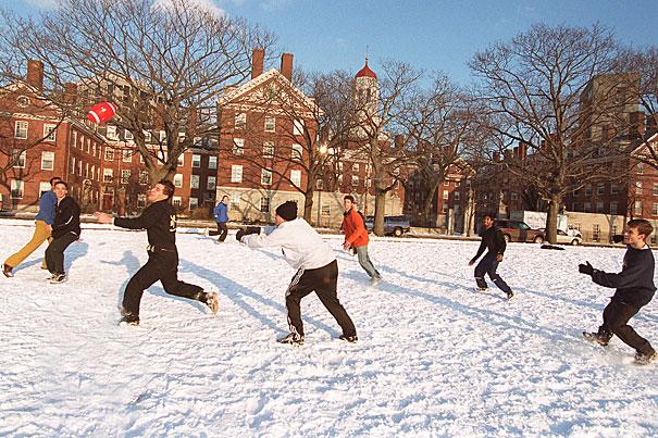 Bring More Winter Sunshine Tips