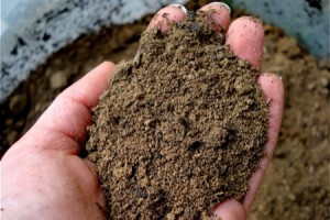 Know the Soils of Your Garden Tips