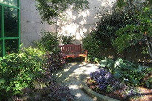Best Unusual Garden Ideas