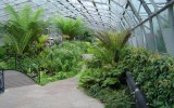 <b>Winter Garden Benefits and Tips</b>