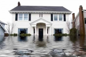 home improvement business insurance