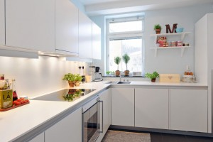 Chic modern pure white kitchen interior